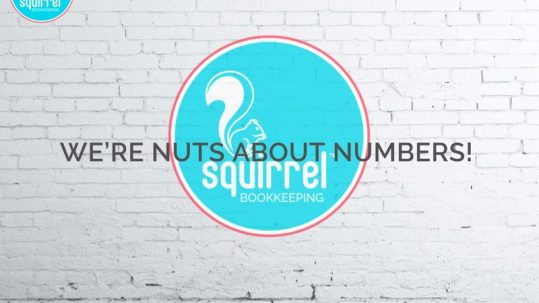 Squirrel Bookkeeping Website is Live!